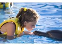 Logo tour Nado Interactivo con Delfines Cancún