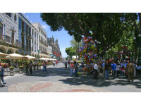 Logo tour Paseo en tranvía por la ciudad de Puebla