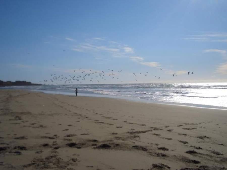 Disfruta del atardecer en la playa de Rosarito