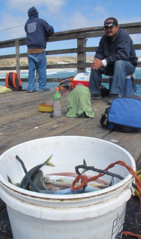 Una de las actividades principales de Rosarito es la pesca