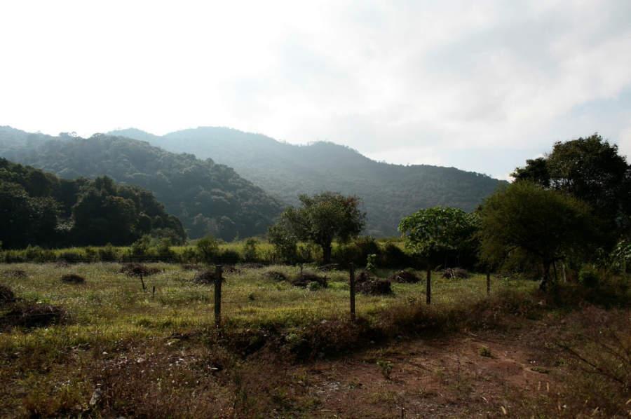Jalpan de Serra se ubica en la región de la Huasteca
