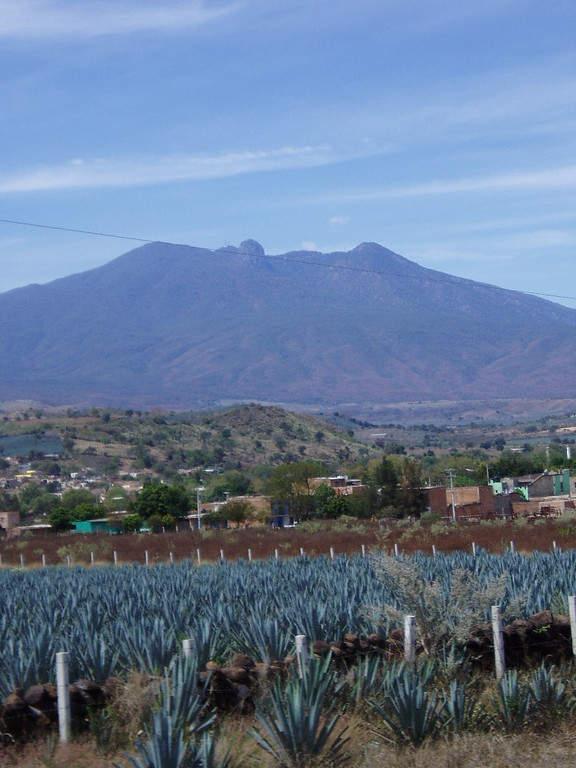 El Pueblo Mágico de Tequila se encuentra  muy cerca de Guadalajara