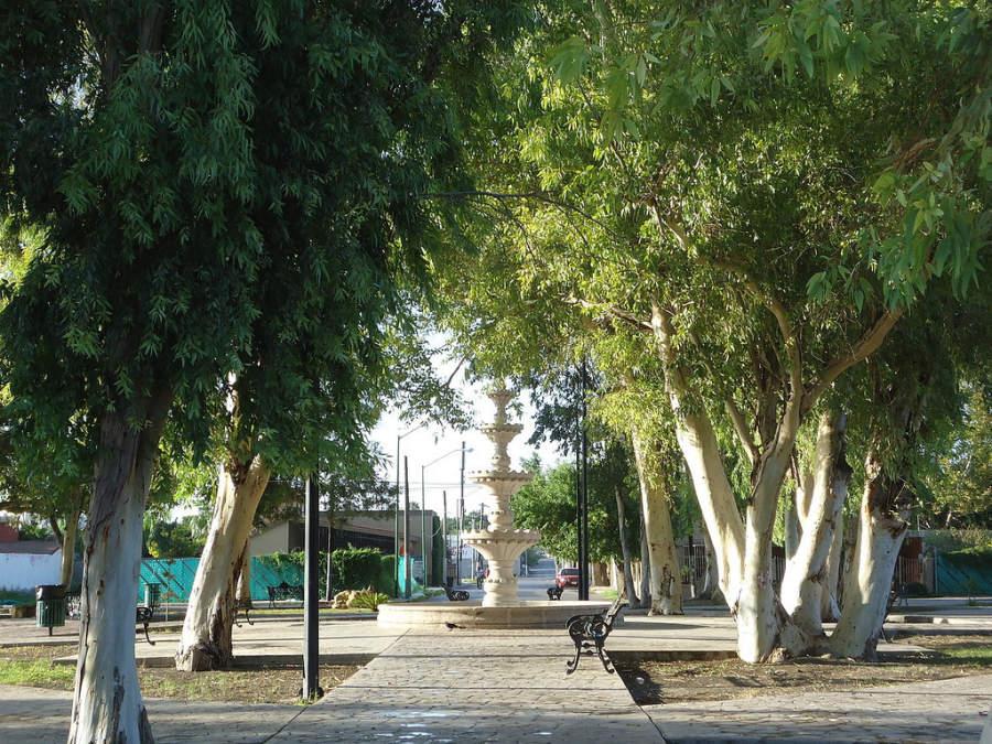 Piedras Negras es una ciudad con múltiples plazas y parques