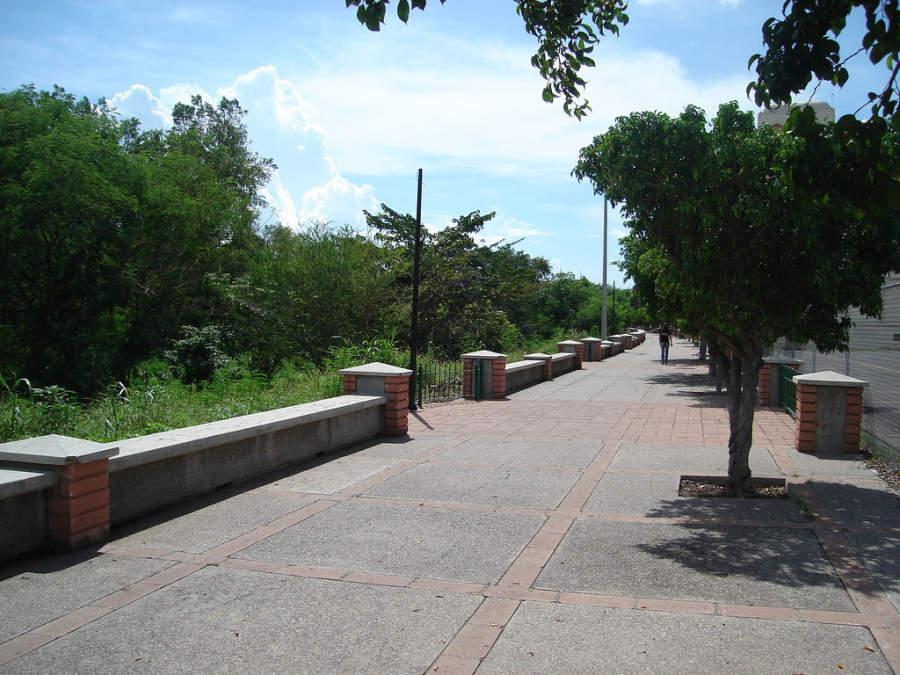 Andador de Culiacán