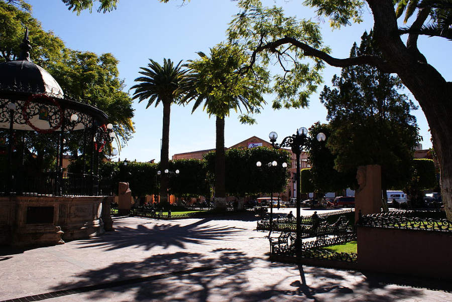 Jardines de la Plaza Constituyentes en Lagos de Moreno