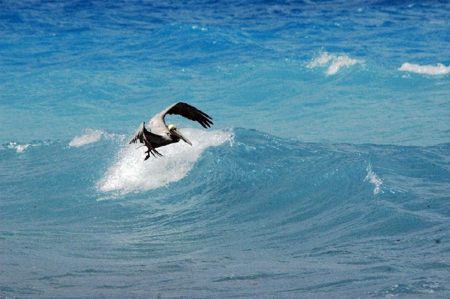 Varadero también es llamado Playa Azul