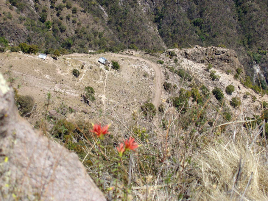 Internate en la Sierra Tarahumara para visitar Cerocahui