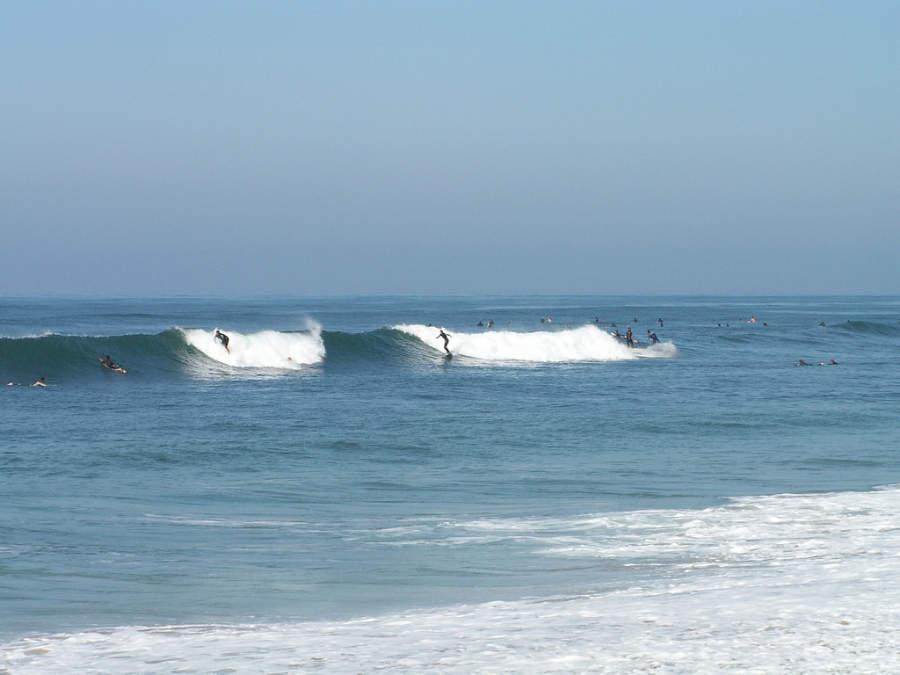 Practica surf en las diferentes playas de Carlsbad