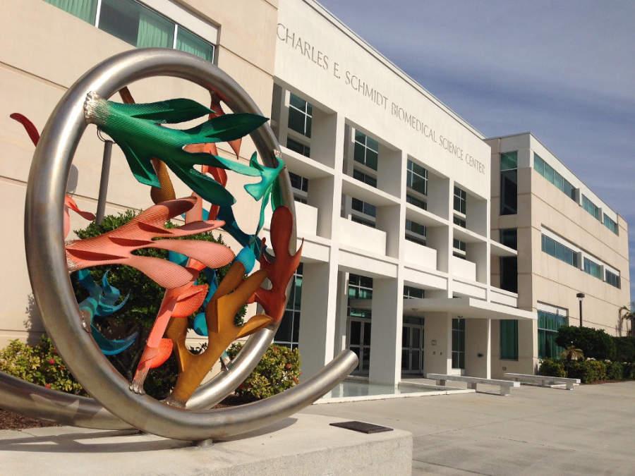 Centro Biomédico Charles E Schmidt en Boca Ratón