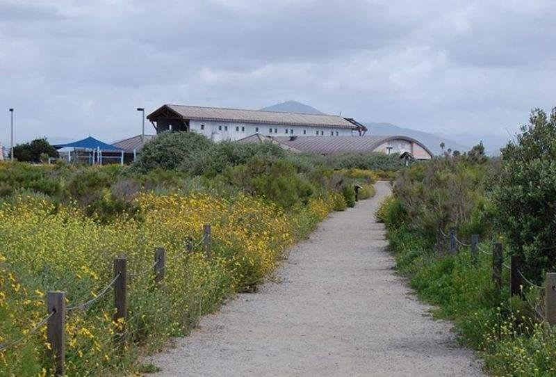 Diviértete en el parque acuático Aquatica, SeaWorld Waterpark™
