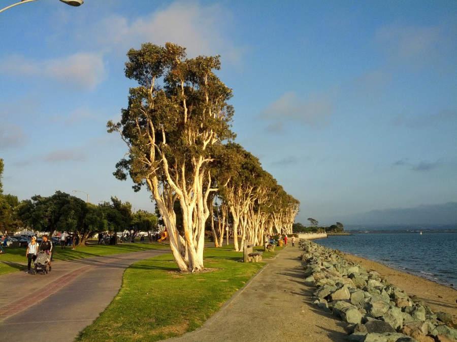 Conoce el parque Chula Vista Bayfront Park
