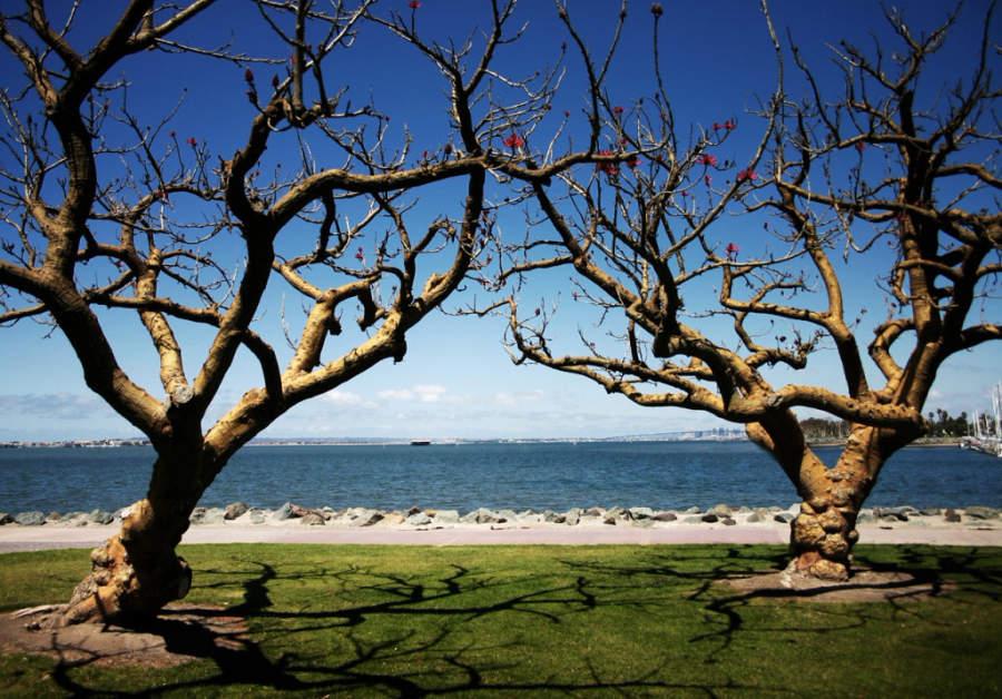Vista de la bahía en Chula Vista
