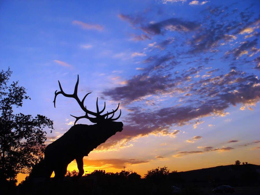 Atardecer en el bulevar Laguna en Elk Grove