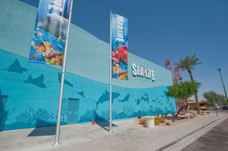 Fachada del acuario Arizona Sea Life
