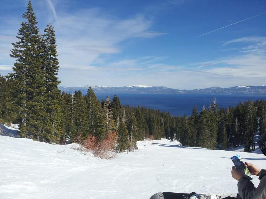Tahoma es ideal para quienes les gusta esquiar