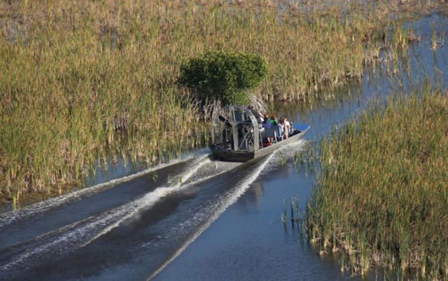 Manglar en la Reserva Nacional de la Bahía Rookery