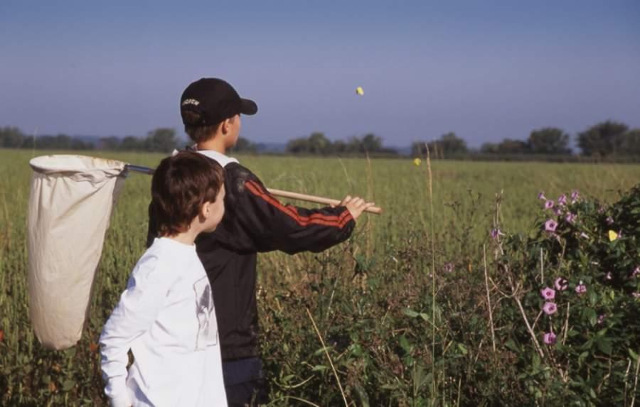 Disfruta de la naturaleza en la zona protegida Katy Prairie