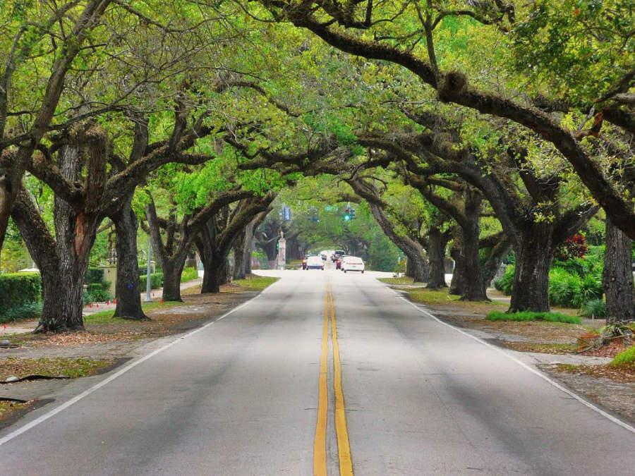 Calle Coral Way en Coral Gables, Florida