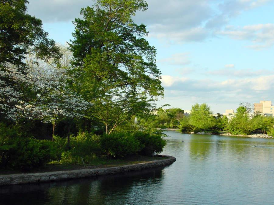 Disfruta del lago Watauga en el Parque Centenario
