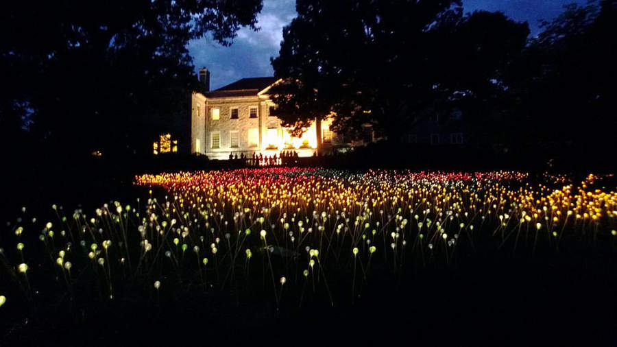 Vista nocturna del Museo y Jardín Botánico Cheekwood