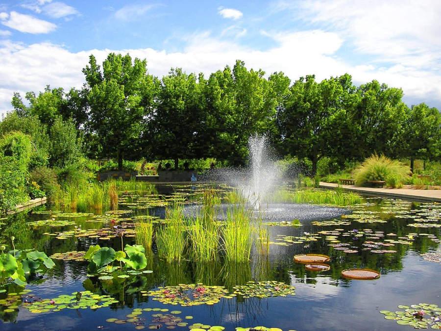 En el Jardín Botánico de Denver hay plantas acuáticas y terrestres