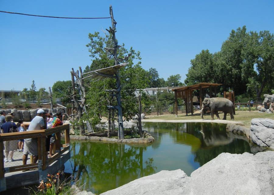 El Zoológico de Denver alberga animales en áreas que semejan su hábitat natural