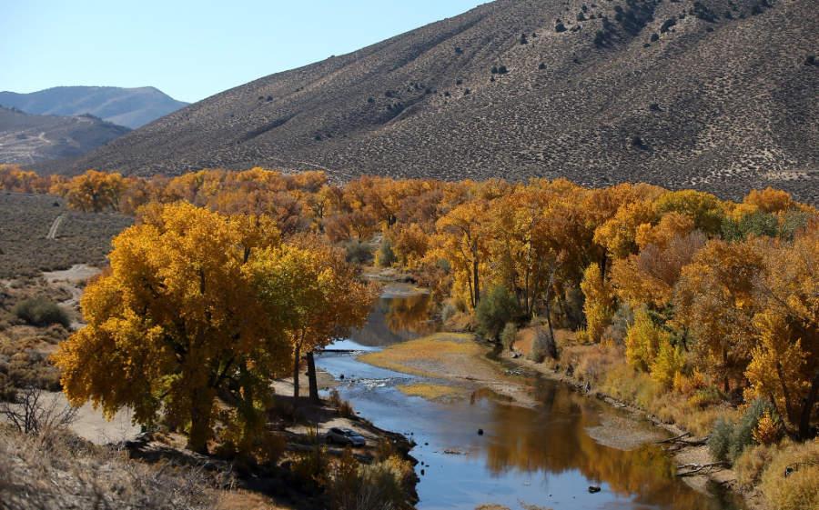 Vista del río Carson en la ciudad de Carson City