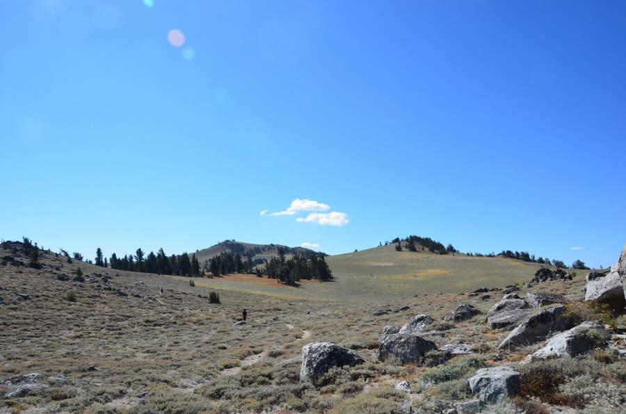 La ciudad de Carson City está rodeada de montañas