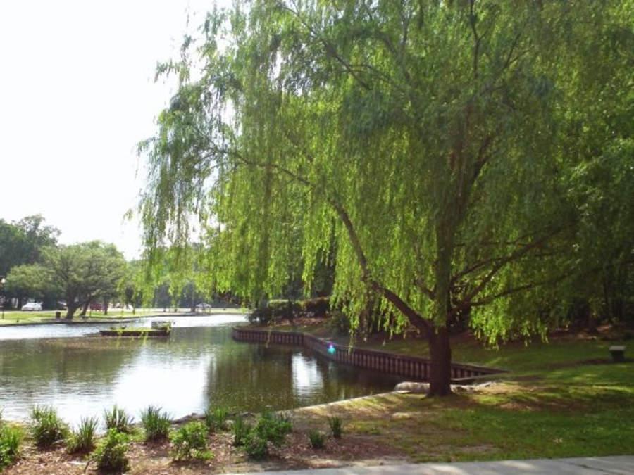 Lago Quarterman en North Charleston, Carolina del Sur