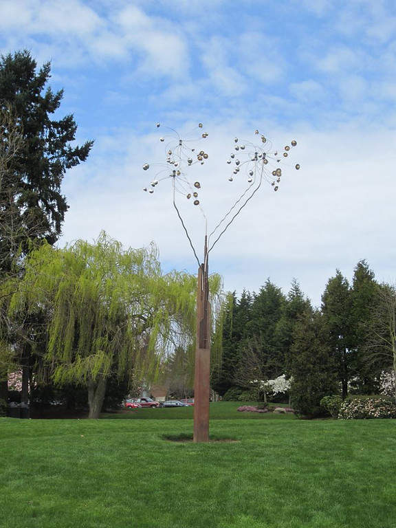 Relájate en los diferentes parques de Bellevue