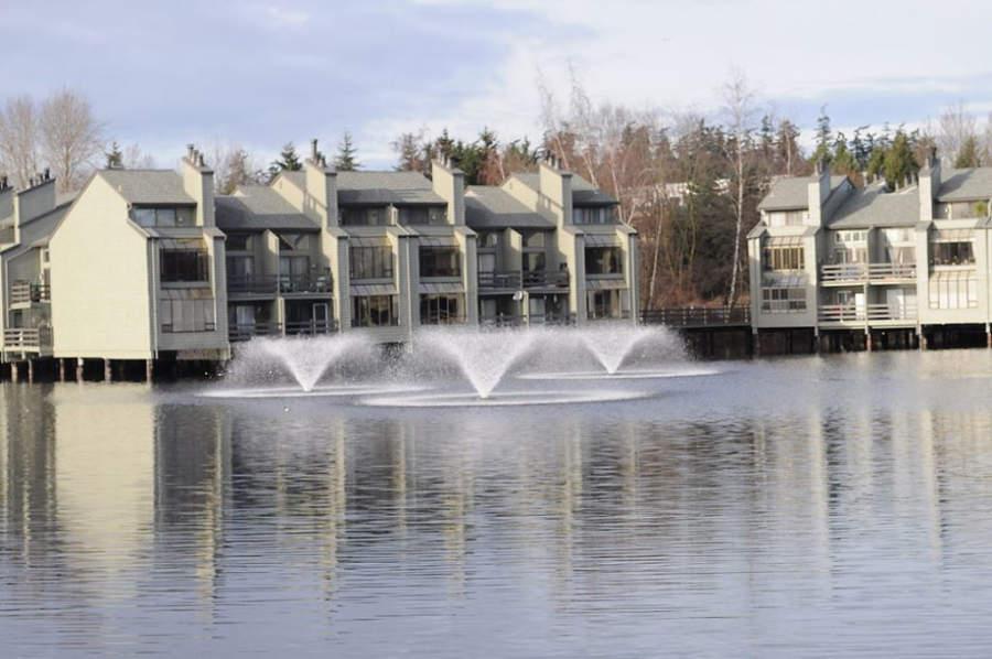 Vista de uno de los lagos en Bellevue