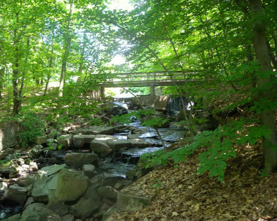 Puente en el Centro Natural Flat Rock Brook, ubicado en la ciudad de Englewood