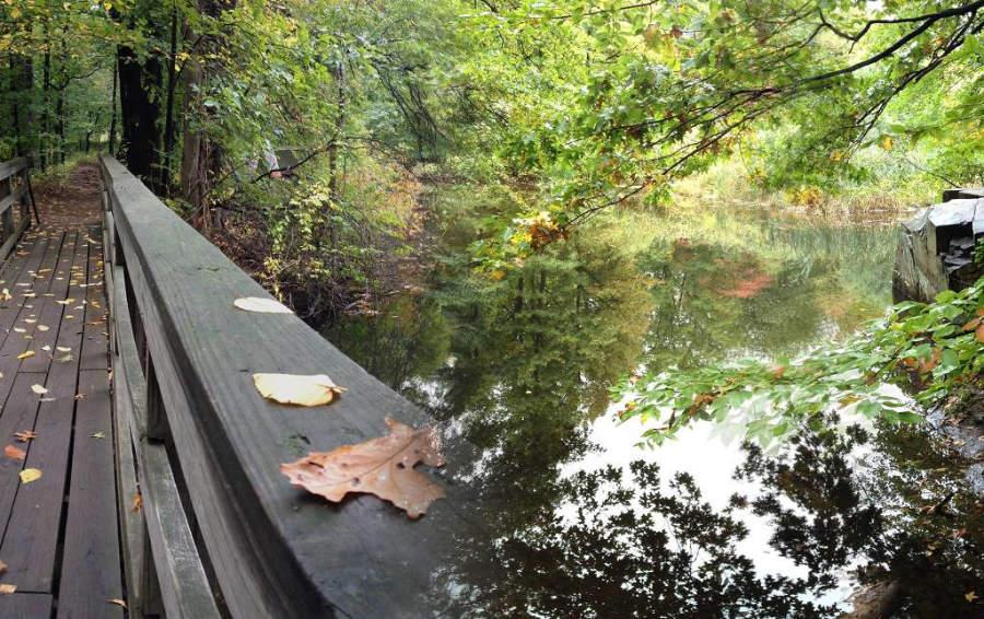 Centro Natural Flat Rock Brook en la comunidad de Englewood