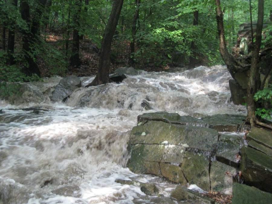 Arroyo en el Centro Natural Flat Rock Brook en Englewood, Nueva Jersey