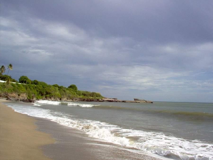 Montelimar es una playa de blancos arenales y exótica vegetación