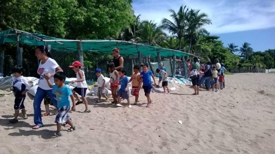 La playa Los Cóbanos es conocida por ser lugar de desove de tortugas
