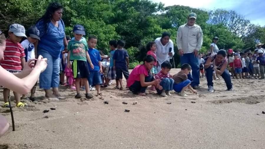 Liberación de tortugas en la playa Los Cóbanos