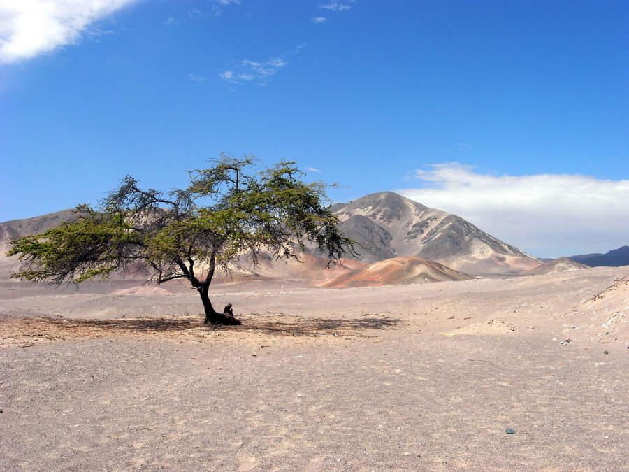 Paisaje en los alrededores de Nazca