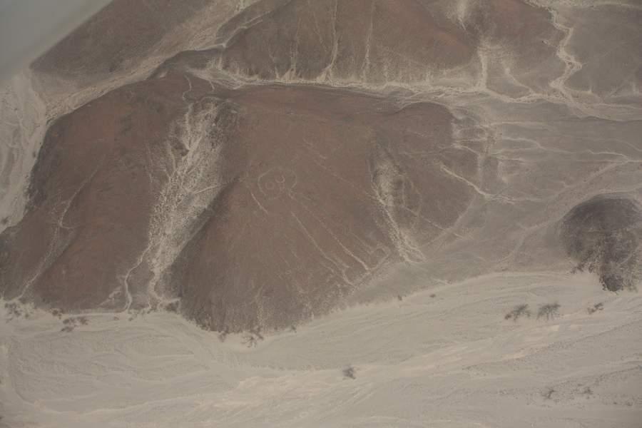 Aprecia las Líneas de Nazca desde una avioneta o globo aerostático