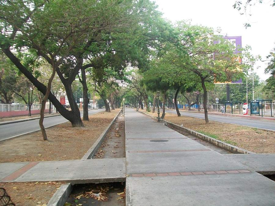 Avenida Las Delicias en Maracay