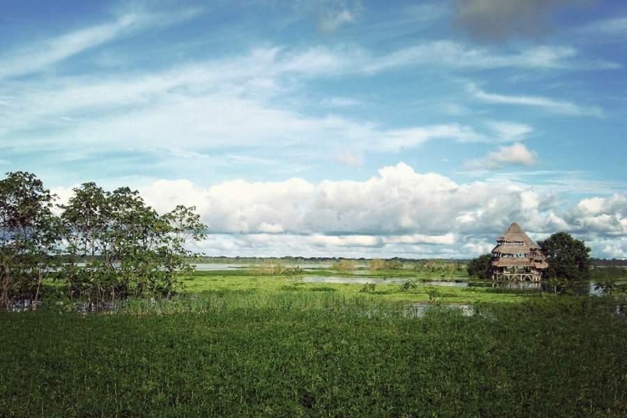 Iquitos es la ciudad más grande de la Amazonia Peruana