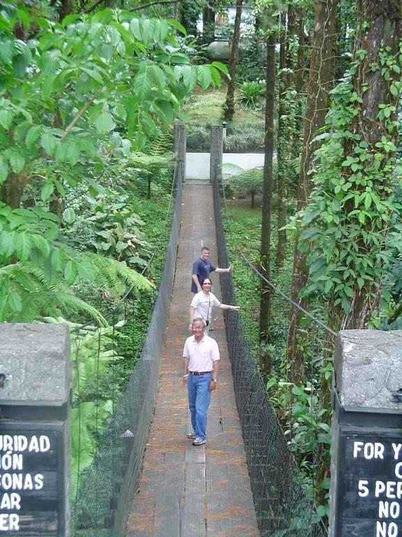 Explora el Parque Nacional Volcán Arenal cerca de Nuevo Arenal