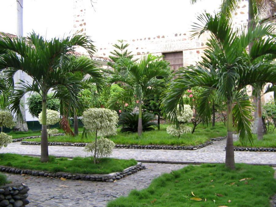 Hermoso jardín en la Catedral Basílica de la Inmaculada Concepción