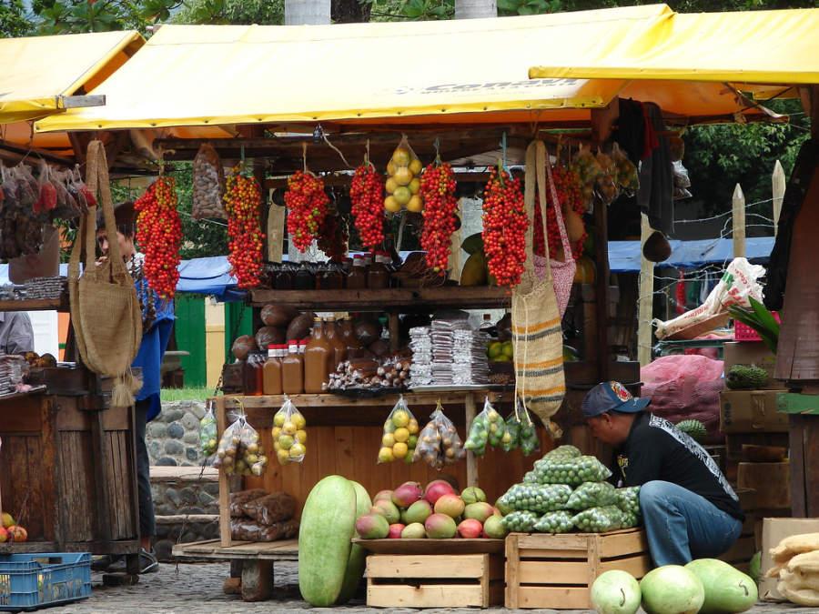 Compra diversos tipos de frutos originarios de Santa Fe de Antioquia