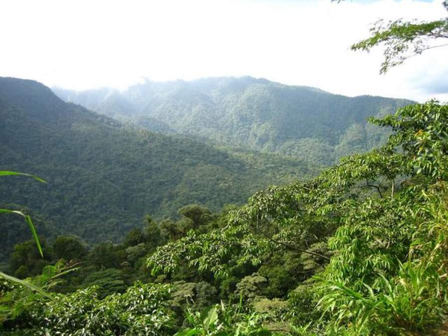 San José de la Montaña es la puerta de entrada al Parque Nacional Braulio Carrillo