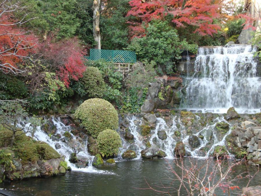 Jardín Chinzan-so en Tokio