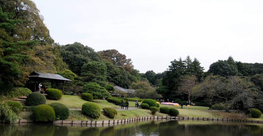 Visita el Jardín Nacional Shinjuku Gyoen en Tokio