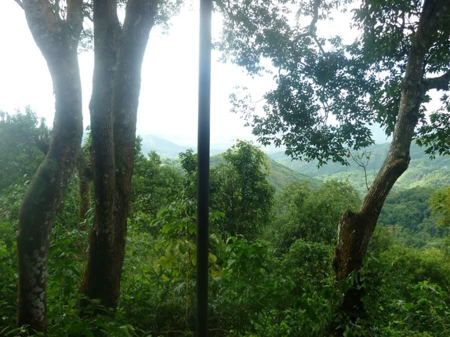 Reserva Natural El Dorado en la ciudad de Minca, Magdalena