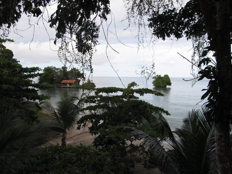 Isla Popa es la única isla del archipiélago de Bocas del Toro donde habitan tucanes en el bosque