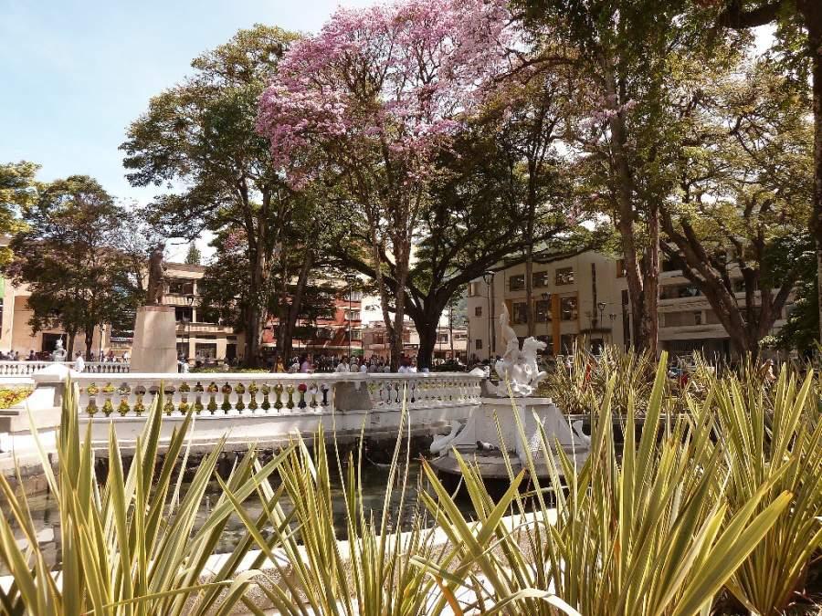 Relájate caminando en alguno de los parques en San Bonifacio de Ibagué